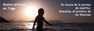 En busca de la pureza de espíritu: Shaucha, el primero de los Niyamas